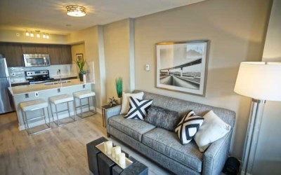One Bedroom -<br />Living Room & Kitchen